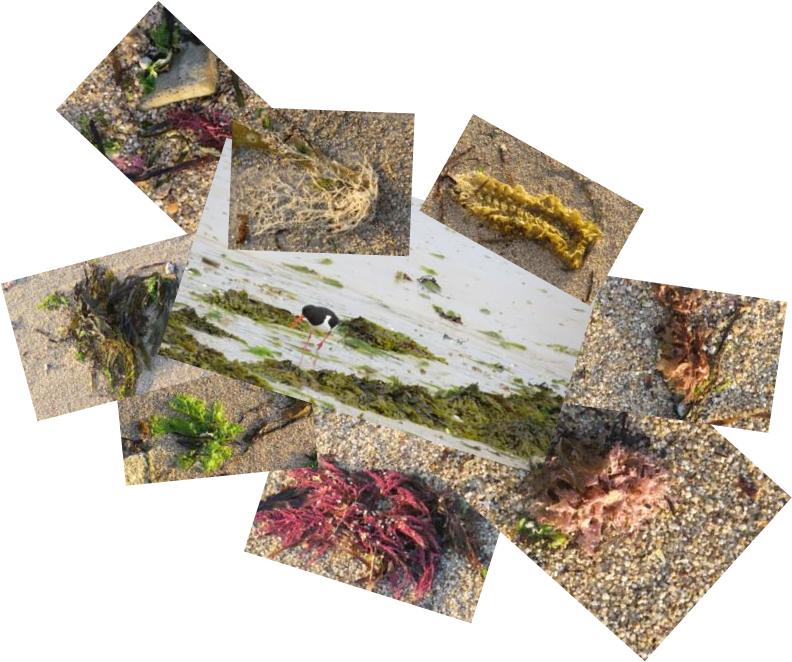 Images for Sample 5.jpg