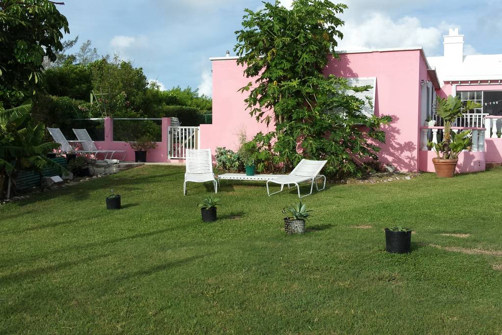 Our other garden area