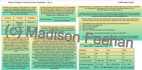 Biology 30 Chapter 19 Charts