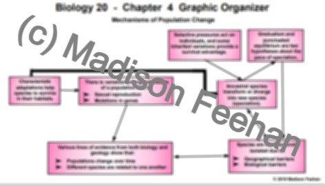 Biology 20 Chapter 4 Chart