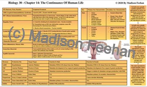 Biology 30 Chapter 14 Charts