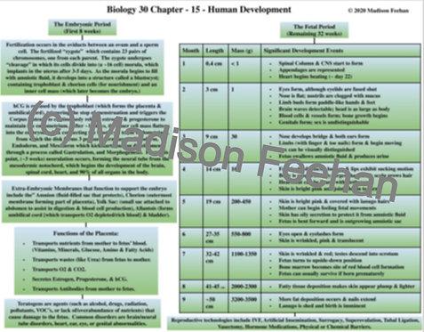 Biology 30 Chapter 15 Charts
