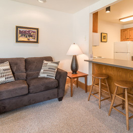 Landmark Orcas Lodging Living Room and Kitchen