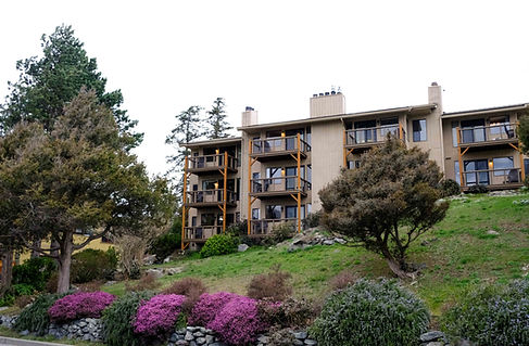 Front of The Landmark Orcas Island from Main Street. Showing purple heather and large green trees in front of and next to the tan building.