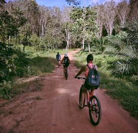 Mountain Bike Tours Koh Lanta