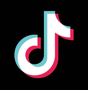 Tik Tok logo.1.png
