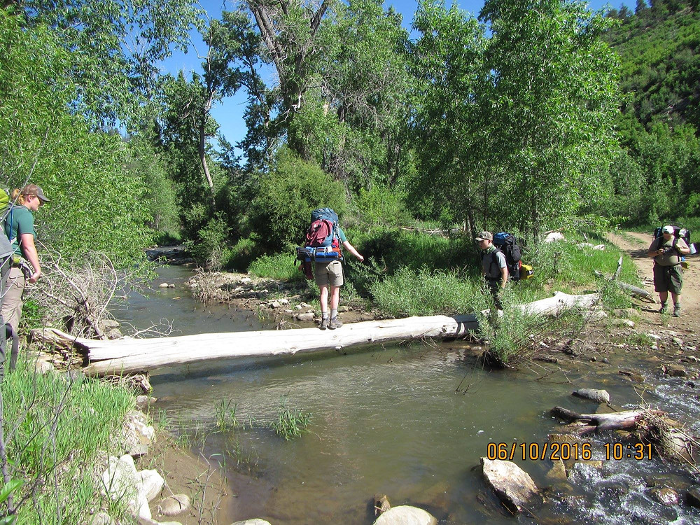 Boy Scout crossing a tree across a creek at Philmont Scout Ranch