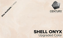 Shell Onyx_Upgraded.jpg