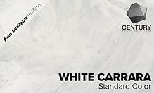White Carrara Standard.jpg