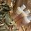 Thumbnail: Refill Bottles