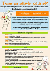 Colloque psyaf 1 AFFICHE-page-001.jpg
