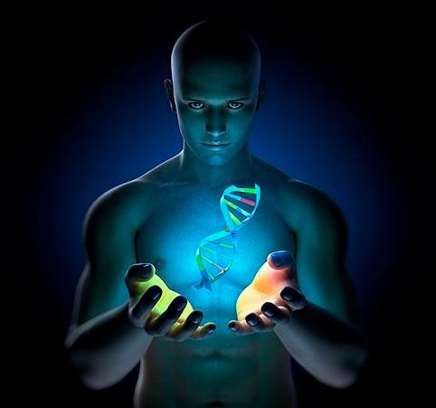 DNA: uma chave transmutadora