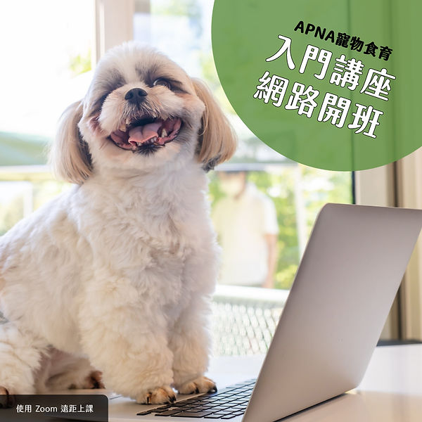 APNA網路開班banner.jpg