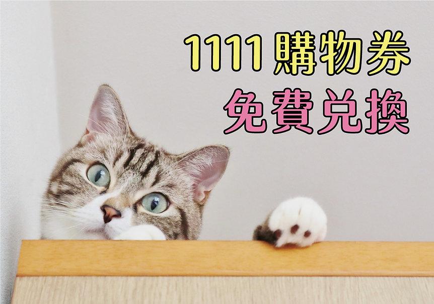 1111券1200.jpg