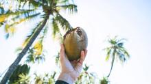 """冷壓初榨、三方有機認證的斐濟島""""椰子油"""""""