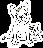 飛比樂logo白底無框png.png