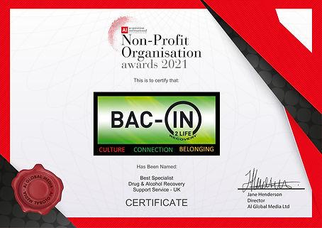 May21362-AI 2021 Non-Profit Org Digital Certificate.jpg