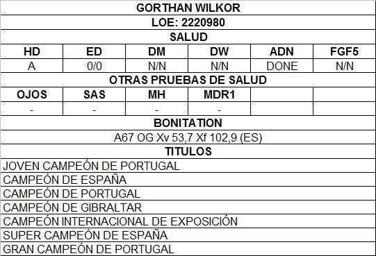 GORTHAN WILKOR.png