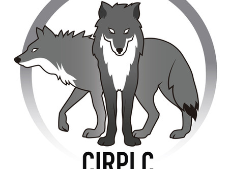 El blog del Perro lobo Checoslovaco