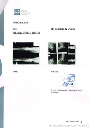 CODO AMVAC.JPG