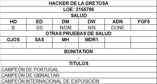 HACKER DE LA GRETOSA.png