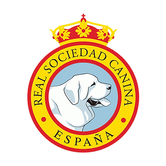 real-sociedad-canina.png
