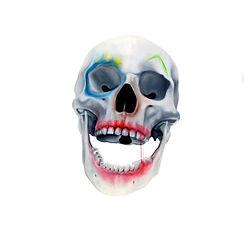 christophe avella bagur - Face FS Skull Clown2