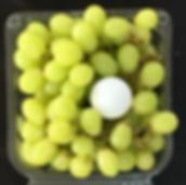 grapes_edited_edited.png