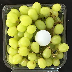 grapes_edited_edited.png