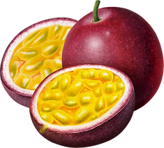 PassionFruit-Passion_Fruit_Whole_Stem_Ha