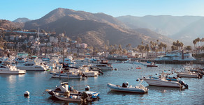 Travel Guide:  Visiting St. Catalina Island - how to get there & what to do