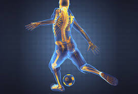 Active Spine