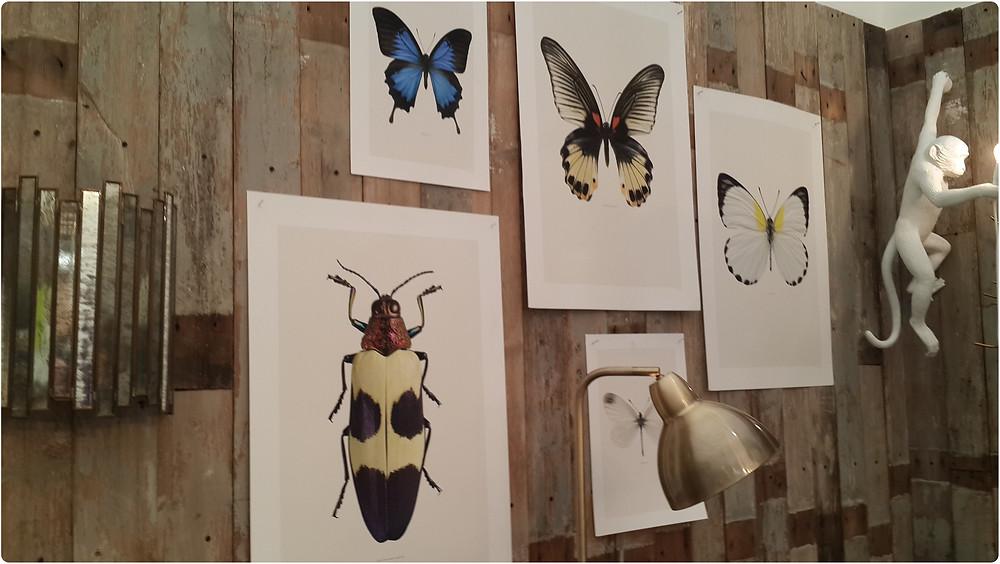 חרקים ומתעופפים בתערוכת העיצוב בלונדון צילום ועריכה: רויטל רודצקי עיצוב פנים והום סטיילינג