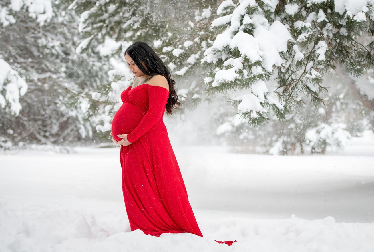 Traverse-City-Maternity-Photographer-033.JPG