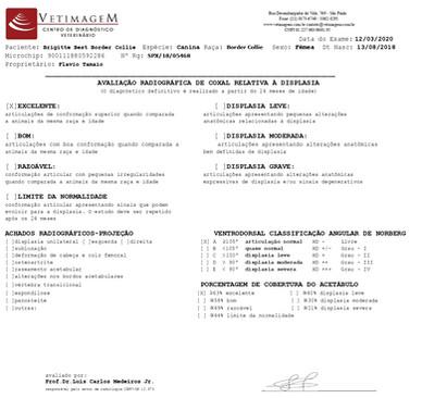 displasia-brigitteCB822FDC-EEEB-2AC7-6CC