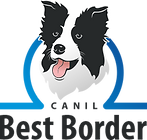 Best Border Colie - Logo 2020.png