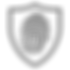 Fingerprint Security 2.0 Tungsten.png