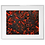 Thumbnail: '1' 40cm x 50cm Framed Acrylic on Canvas Board