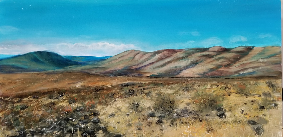 Scrubland *sold