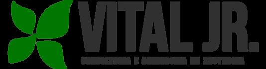Vital JR logo..png
