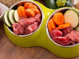 Alimentação natural para pets: Mercado promissor