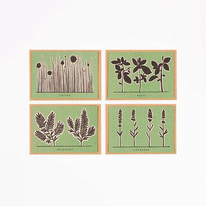 Herb Recipe Notecard Pack (x4)