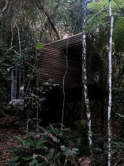 Passe o fim de semana numa cabana na floresta