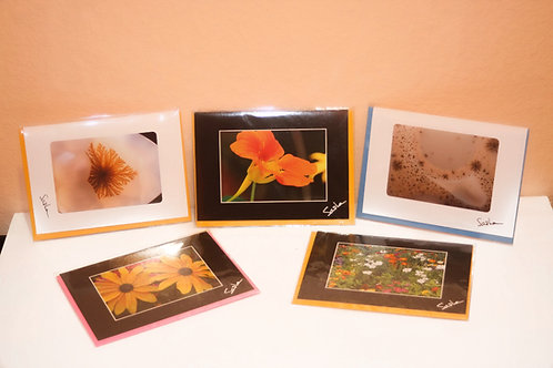 Individual Note Cards