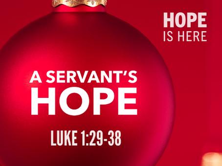 A Servant's Hope