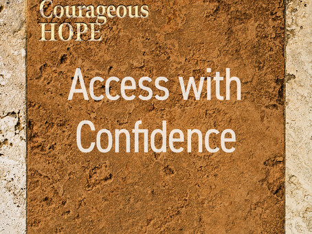 Access with Confidence