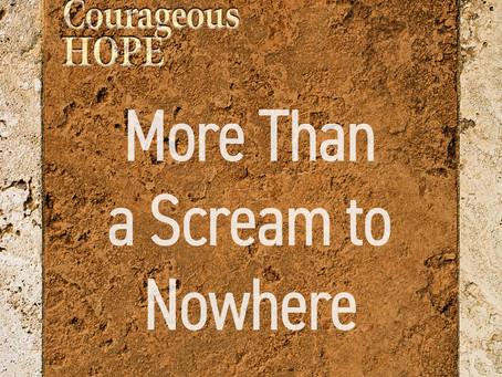 More Than a Scream to Nowhere