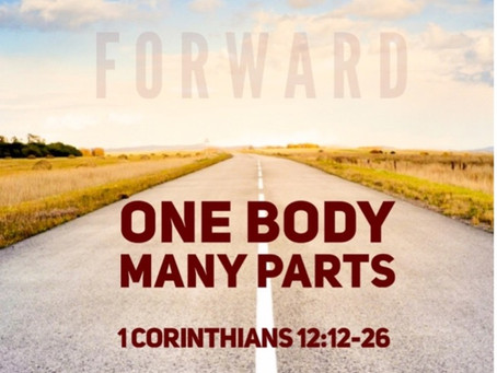 One Body, Many Parts