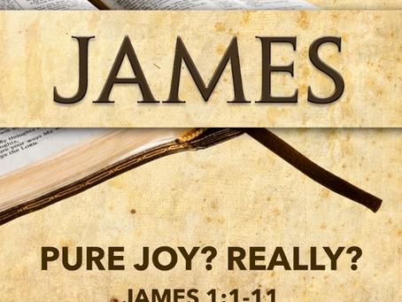Pure Joy? Really?