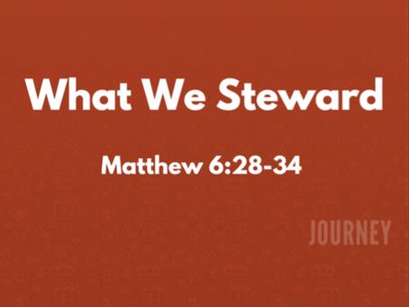 What We Steward